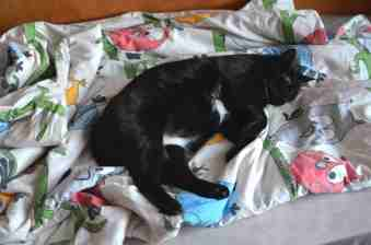 und jetzt ins warme Bett...